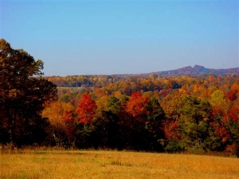 sparta tn fall colors  skyline orchard photo