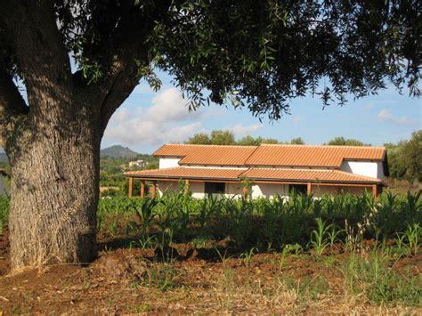 Olivenbaum Im Haus by Quot Olivenbaum Mit Haus Quot Agriturismo Ninea Ricadi