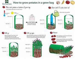Potato Grow Bags  U2013 West Coast Seeds