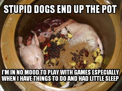 Meme Creator   stupid dogs end up the pot I'm in no mood