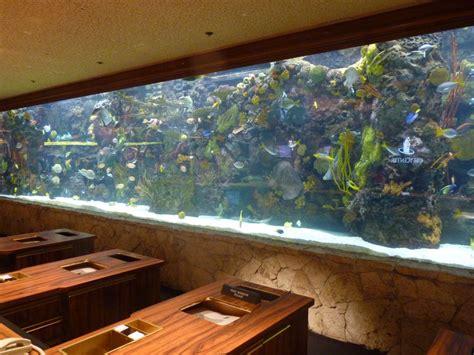 gallon saltwater fish tank  gal tank
