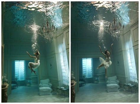 dive   art  underwater photography
