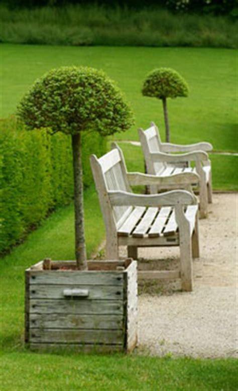 top 10 des plantes et fleurs pour un jardin romantique et bucolique 224 souhait