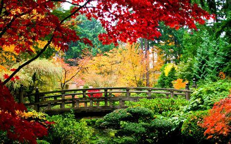 garden autumn world architecture bridges asian oriental garden fall autumn colors seasons leaves stream plants