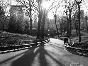 Central Park Black & White