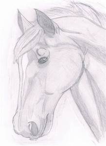 paint horse head | Horse head sketch by ~puddlecat1 on ...