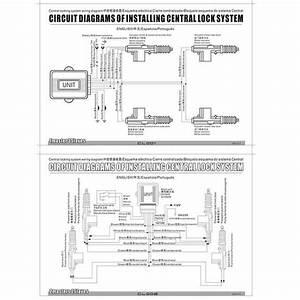 Wiring Diagram  5 Wire Door Lock Actuator Wiring
