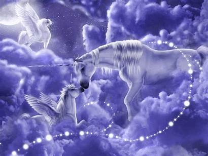 Unicorns Fantasy Animated Unicorn Lacilu22 Photobucket Anime