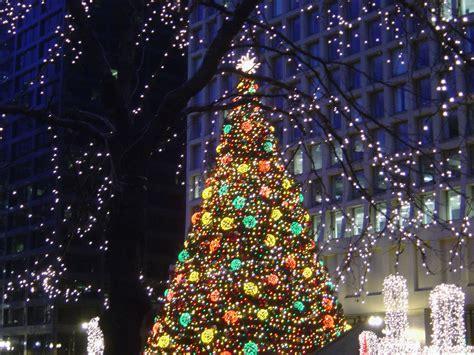 chicago daley plaza christmas tree 2006 photo page