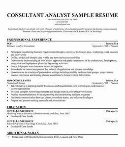 resume samples small business consultant resume With resume builder consultant