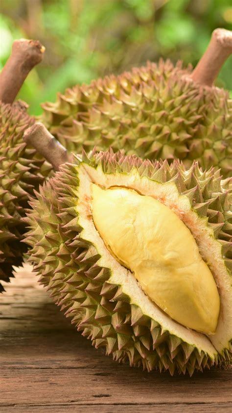 wallpaper durian fruit  food