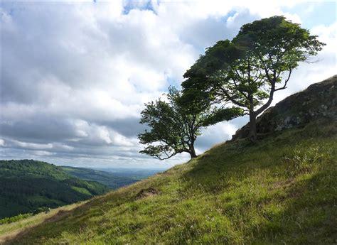 Elevation Of 6 Maesyllan, Meifod Sy22 6de, Uk Maplogs