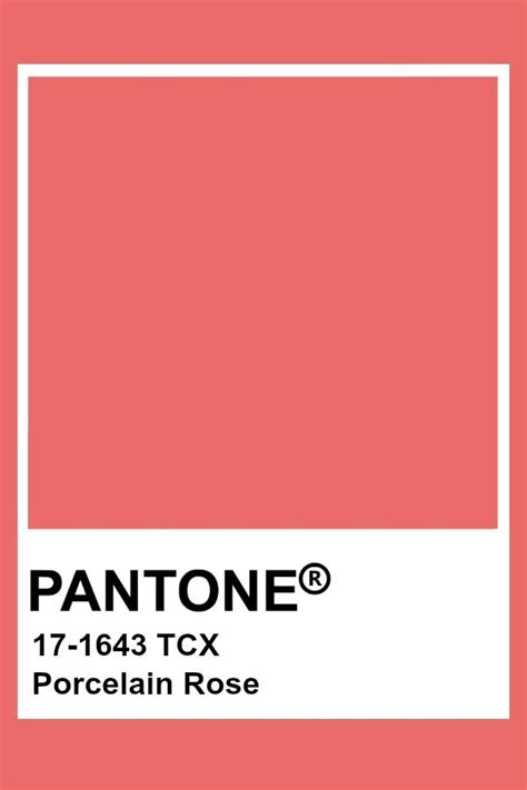 pin by color wheel on coral salmon cayenne pastel red
