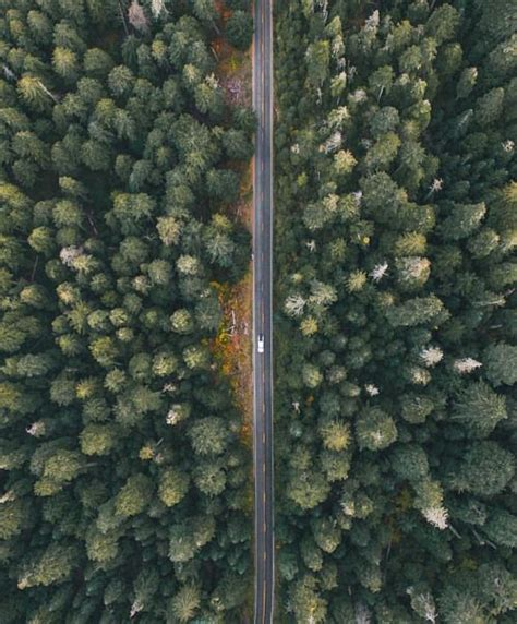 birds eye view angle   road emphasizes