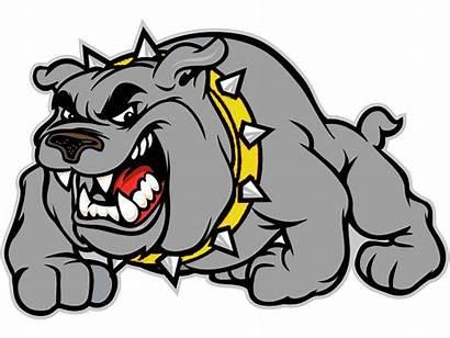 Lafayette Bulldog Bulldogs Cartoon Background Clipart Al