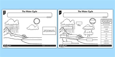 the water cycle worksheet for primary resource