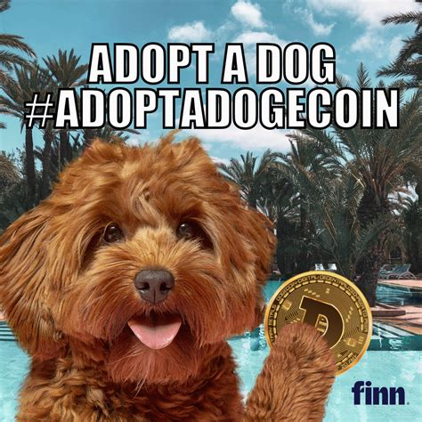 You will be redirected to a new trading page. Pet food brand Finn to boost Dog adoptions 'to the moon ...