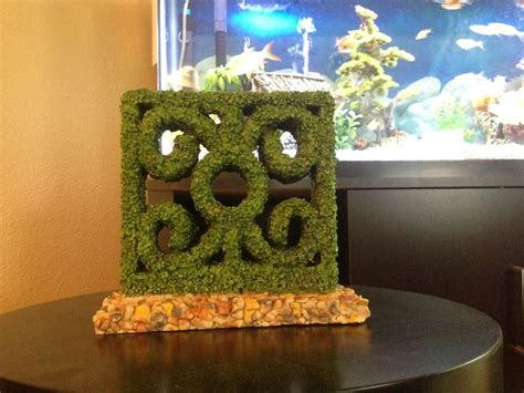 17 best images about fish tank ideas on pinterest fish