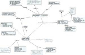 On Concept Map Neonatal Jaundice
