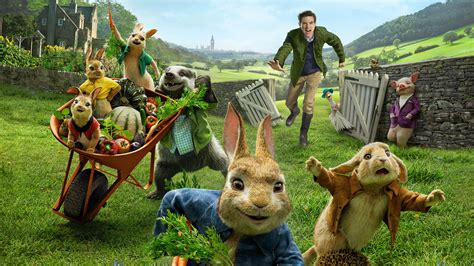 peter rabbit hd movies  wallpapers images