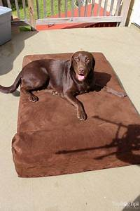 25 best ideas about best dog beds on pinterest puppy With big barker dog beds on sale