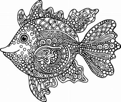 Coloring Fish Exotic Pages Kidspressmagazine Adult Animal