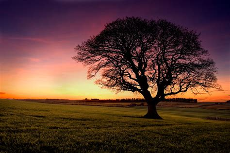 spectacular photography  sunsets designzzz