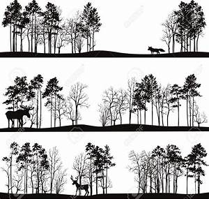 Set Of Different Landscapes With Pine Trees And Wild ...