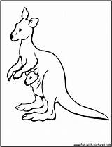 Kangaroo Coloring Pages Cute Printable Kangaroos Australia Animal Australian Google Cartoon Clipart Printables Wallabies Wallaby Baby Getcoloringpages Fun Clipartmag Library sketch template