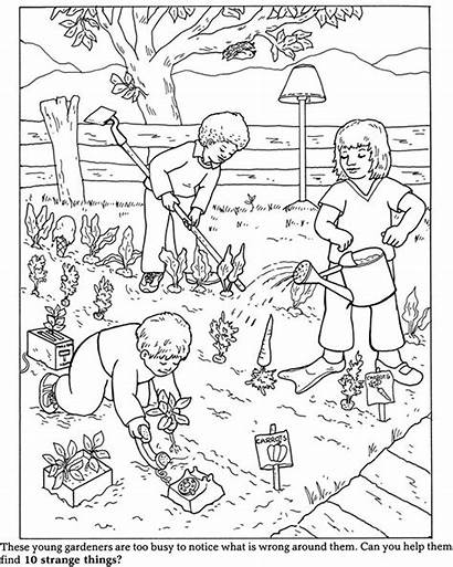 Wrong Garden Coloring Vegetable Drawing Pages Preschool