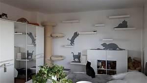 Welche Dübel Für Welche Wand : diy cat walk mit ikea lack ~ Lizthompson.info Haus und Dekorationen