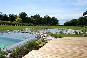 quelle plante autour d une piscine exotisme autour d 39 With quelle plante autour d une piscine