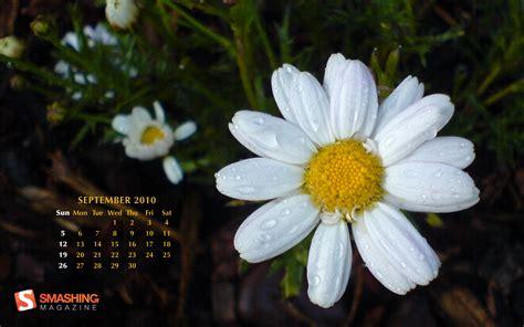 65 Desktop Wallpaper Calendar Kitchenaid Siphon Coffee Brewer Cloth Filter San Francisco Bay Lincoln Ca Turkish Pot Amazon Uk French Roast Target Drip Sand Ibrik Cezve