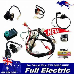 Wiring Harness Cdi Coil Kill Key Switch 50cc 110cc 125cc Atv Quad Bike Buggy