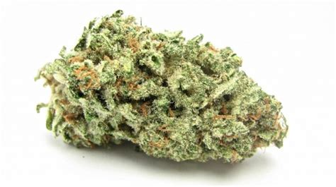 Ak-47 Weed Strain For Sale