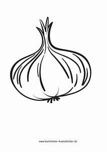 Gemüse Bilder Zum Ausdrucken : ausmalbilder zwiebel lebensmittel zum ausmalen ~ A.2002-acura-tl-radio.info Haus und Dekorationen