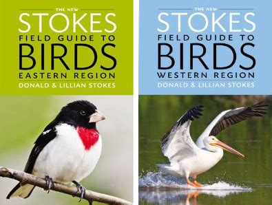 stokes birding blog yeah they re here the new stokes