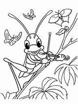 Grasshopper Coloring Pages Printable sketch template