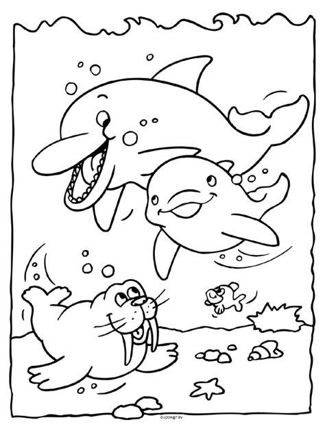 Dolfijnen In De Zee Kleurplaat by Kleurplaat Dolfijn Met Jong Kleurplaten Nl