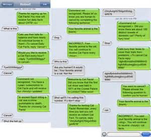 cat facts meme image 241756 cat facts text trolling your meme
