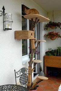 Kratzbaum Echter Baum : katzenkratzbaum ein echter baum cat furniture pinterest cat furniture ~ Markanthonyermac.com Haus und Dekorationen
