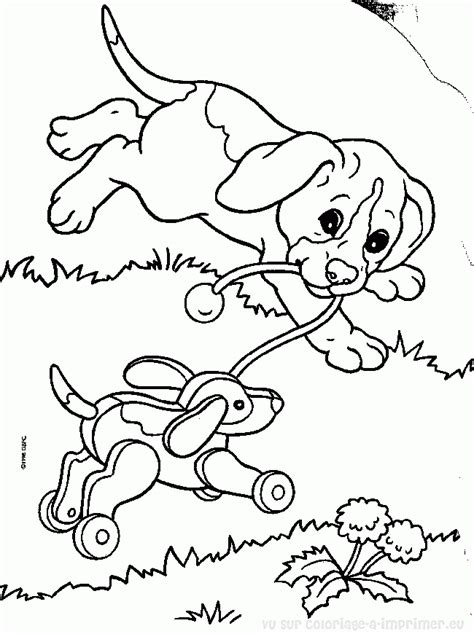 coloriage des bebe animaux domestique