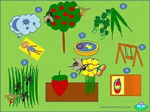 Garten Für Kinder : ein garten f r kinder kindergarten es schreibt f r sie birgitt jendrosch ~ Whattoseeinmadrid.com Haus und Dekorationen