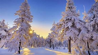 Winter Pc Desktop Sun
