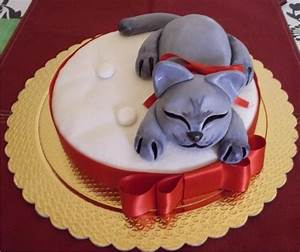 Torta Compleanno Gatto Donkirbyphotography