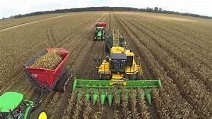 Seed Corn Harvest - YouTube