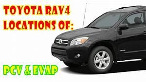 Toyota Rav4 Emissions Locations  Pcv  U0026 Evap