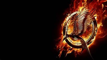 Hunger Games Fire Catching Wallpapers Computer Backgrounds