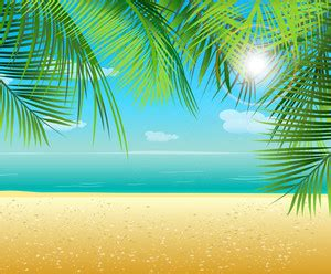 vector summer background  palm leaves royalty