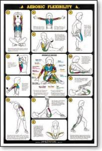 Weight Training Flexibility Chart